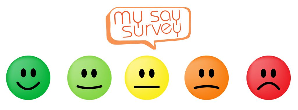 My Say Survey - Visitor Engagement and Surveys